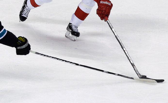 dĺžka hokejky